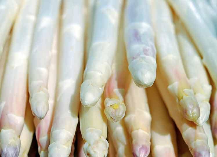 Witte aspergesoep